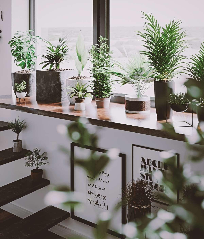 apartment cgi