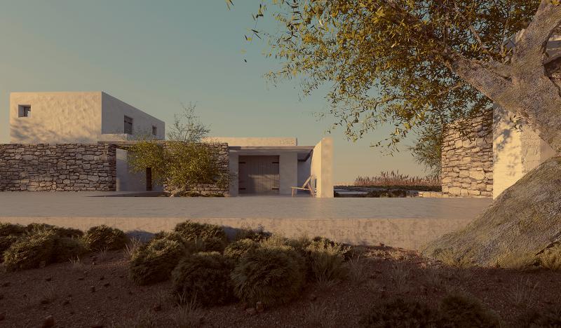 minimal villa in antiparos with olive tree